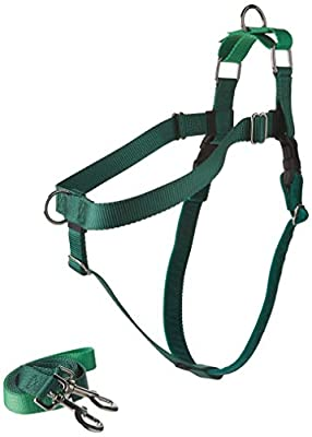 """2 Hounds Design Freedom No-Pull Dog Harness and Leash, Adjustable Comfortable Control for Dog Walking, Made in USA (XLarge 1"""") (Kelly Green)"""