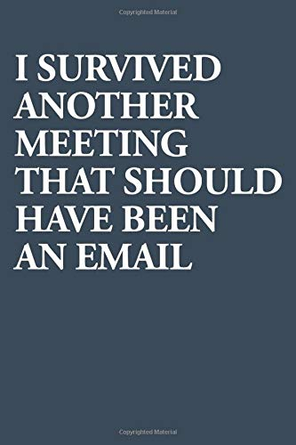 I Survived Another Meeting That Should Have Been An Email - Lined - 6 x 9 - 120 pages - Notebook - Journal - Funny Gift For Work & College: Tell your Boss what you think about useless Meetings!