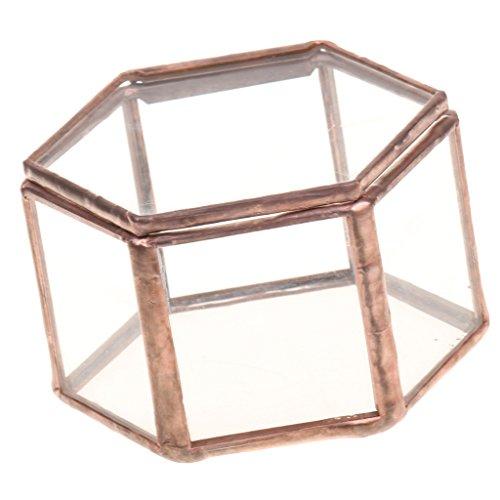 Multifunktion Hexagonal Terrarium Kasten Box Topfe für Schmuck Pflanzen Blumen Kerzen usw.