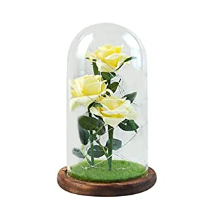 Cayyy Enchanted Rose Led Glass Display, Enternal Roses Colorful Rose Lamp in Glass Dome with Wood Base for Valentine's Day Wedding Gift Yellow