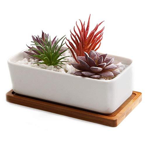 T4U Conjunto de 1 Ceramica Blanca Rectángulo Cerámicos Planta Maceta Suculento Cactus Planta Maceta Planta Contenedor Vivero Maceta Macetas de jardín Macetas Envase