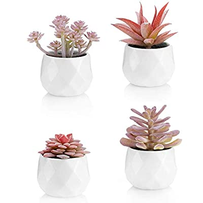 Viverie Artificial Succulent Plants in White Ceramic Pots for Desk, Office, Living Room, and Home Decoration - Faux Plant Included