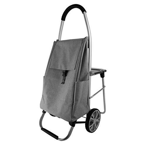 LXCS Portable Domestica Trolley, Carrello Spesa Piccolo Pull Carrello Sedile supermercato Carrello, Carrello Rimorchio Carrello for valigie (Color : Gray)