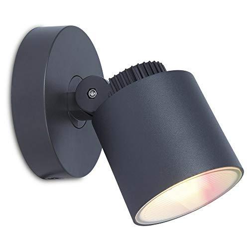 Explorer Wiz LED buitenwandlamp van aluminium in antraciet RBGW | IP54 wand-buitenlamp met app-besturing voor tuin, balkon, terras, outdoor huismuur