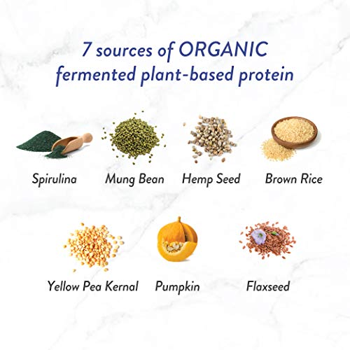 Genuine Health Fermented Organic Vegan Proteins+, Natural Chocolate Protein Powder, 20g Protein, 21.16 oz tub, 20 Servings
