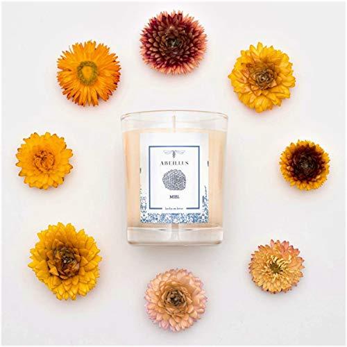 abeillus Fragrance - Bougie Parfumée Naturelle 100% Végétale - Jardin en hiver - Miel - Parfum Doux et Reposant - Fabriquée en France - 45h de Combustion - 180 g AB100403 Creamy