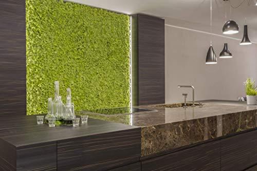 Pannelli in Lichene, Moss Panels, lichene stabilizzato, parete vegetale, zero manutenzione, box da 4 pannelli