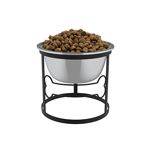 Stainless Steel Elevated Pet Bowl with Stand for Dogs and Cats-Raised Feeder for Food/Water With Removeable Dishwasher Safe Dish- 40 Oz By PETMAKER