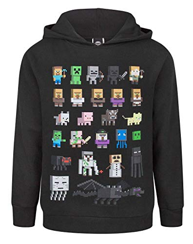 Minecraft Sprites Boy's Black Hoodie (9-10 Years)