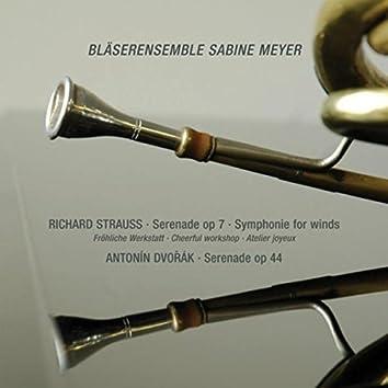 Strauss: Serenade, Op. 7 & Symphony for Winds - Dvořák: Serenade, Op. 44