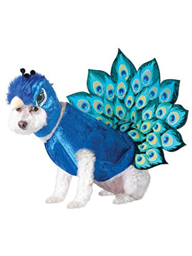 California Costumes Peacock Dog Costumes, Pet, Multi, Extra Small