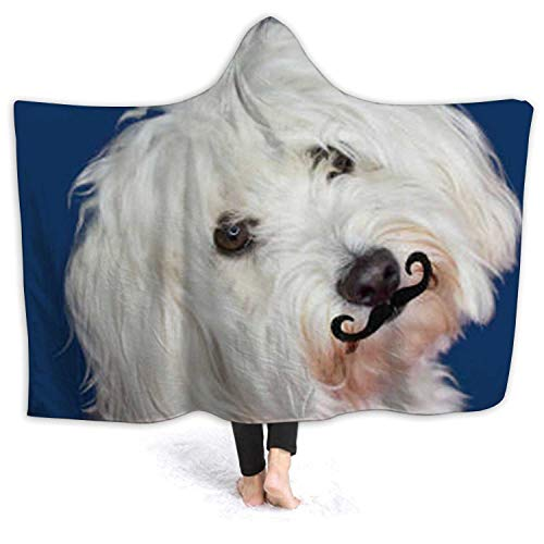 Tstyrea Maltese Dog Tilting The - Side and Wearing A Fake Mustache.Isolated Against Blue Colored Background Spain,Wele Throw Blanket Microfiber Bedding for Kids and Adults Animal L 80''x60''(WxH)