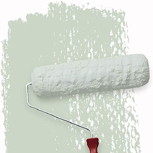WALLCOVER Colors Wandfarbe Grün Pastell 5 L für Innen Innenfarbe Shadow 2B Matt | Profi Innenwandfarbe in Premium Qualität | weitere Größen und Farbtöne erhältlich