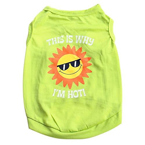 YWLINK Haustier Sonne Muster Sommer Weste-T-Shirt Kleiner Hund Katze Süß Pet Kleidung(Grün,S)