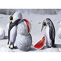 QMGLBG 5Dダイヤモンド塗装 ペンギンスイカダイヤモンド塗装ラインストーンクリスタル壁装飾アートワーク30*40cm