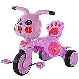 GCXLFJ Triciclo Evolutivo Toral Triciclos de Triciclo de niños de Dibujos Animados, 1-3-3-5 años de Edad del bebé Scooter Ligero con Luces de música Chica (Color : Pink)