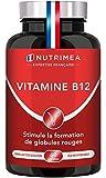 VITAMINE B12 VEGAN - 1000 µg de Cyanocobalamine, forme la plus stable -...