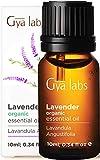 Aceite esencial de lavanda orgánica para difusor, piel y cabello (10 ml) -...