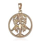 12 Constelación zodiaco collar colgante hombre firma del collar del acero inoxidable de las mujeres hombres de las mujeres de la cadena de joyería de moda regalo Accesorios ( Metal Color : Cancer )