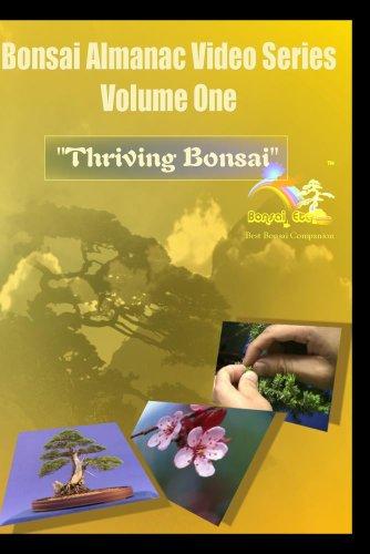 Thriving Bonsai