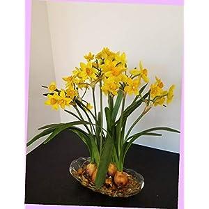 Artificial Artificial Silk Flower Floral Arrangement Yellow Narcissus 4 Bulbs Flowers Bouquet Realistic Flower Arrangements Craft Art Decor Plant for Party Home Wedding Decoration