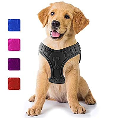metric usa / Comfort Fit Pets Lightweight Soft Padded No Pull Small Dog Harness Vest ? Easy to Put on & Take Off ? Interior & Exterior Padded Puppy Harness ? Ensures Your Dog is Cool & Comfortable
