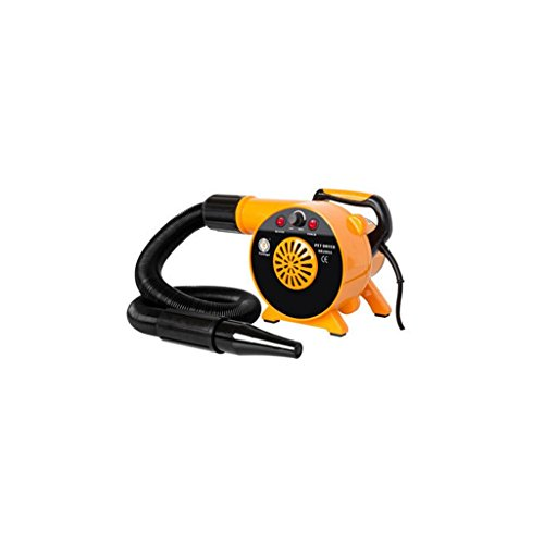 Cxjff Jlxl Dog Dryer 2500W Agua for Mascotas for soplador Secador de Pelo Windy Low Noise (Color : Orange)