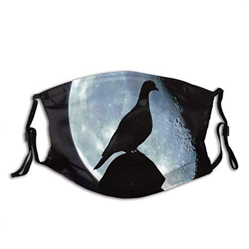 AYGoUP Gesichtsschutz Mundschutz Pigeon Shadow of Pigeon Dove Vogel Blue Moon Planet Mystery Mysterious Wiederverwendbarer Nasenschutz Waschbar staubdicht gegen Verschmutzung