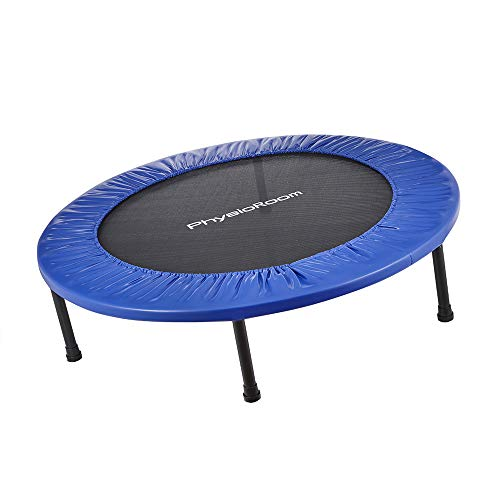 PhysioRoom Round Sport Fitness Mini Trampoline - Small Indoor/Outdoor Exercise Bouncer - Rebounder Trampoline for Cardio, Weight Loss, Improving Balance & Aerobic Workouts in a Home Gym or Garden