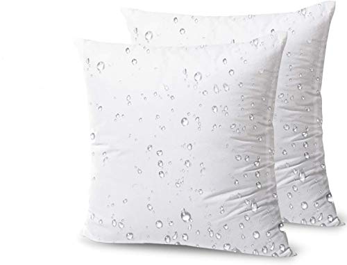 Phantoscope Premium Outdoor Pillow Inserts - Pack of 2 Square Form Decorative Throw Pillow Couch Sham Cushion Stuffer 18 x 18 inches- Water, Mildew, Dust Mite Resistant