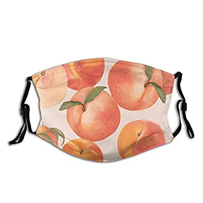 EollxC Reusable Peaches Breathable Dust-Proof Safety Face Protection Filter 1 PCS