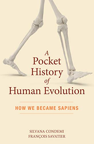 A Pocket History of Human Evolution: How We Became Sapiens