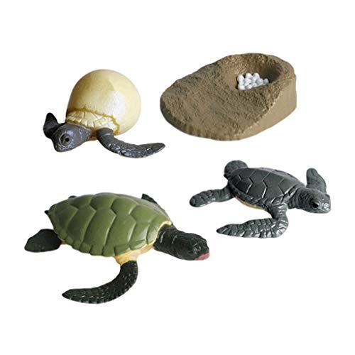 perfeclan Simulación Realista De Tortugas Marinas Figuras De Acción Modelo De Ciclo De Crecimiento Juguetes Educativos para Niños