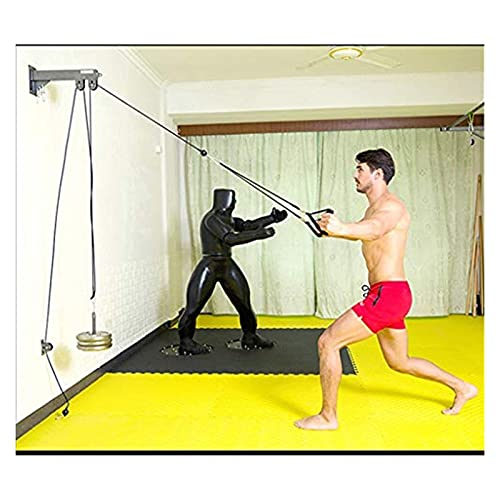 ZXFF Sistema De Polea De Cable De Pared, Entrenador De Músculo Físico Completo, Adecuado para Latición De Lat, Rizo De Bíceps, Triceps Estiramientos Y Ejercicios Rectos