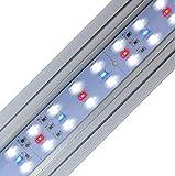 Finnex Stingray 2 - Luz LED para acuario, color azul, 36 pulgadas