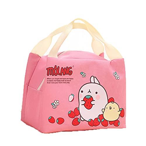 Bolsa de asas ligera del almuerzo Bolso de picnic para bolsas de almuerzo aislada bolsa de picnic bolsa de picnic escolar bolsa de almuerzo Almuerzo bolso de mano para mujeres, hombres, escuela, ofici