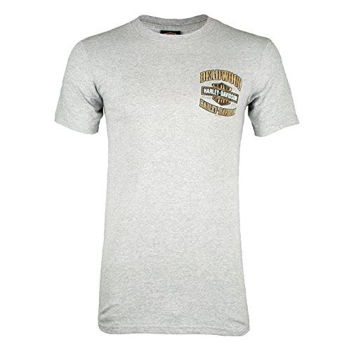 Deadwood Harley-Davidson Men's Cigar Skull Short Sleeve T-Shirt (Medium, Steel Heather)