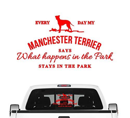 Siviwonder Manchester Terrier Vintage Hundeaufkleber Hundemotiv Auto Folie britisch Farbe Rot, Größe 20cm