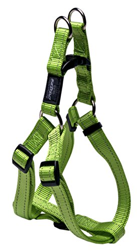 Reflective Adjustable Dog Step in Harness for Large Dogs; matching collar and leash available, Green
