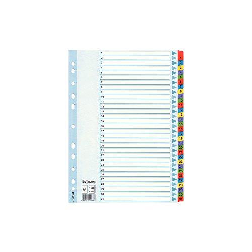 ESSELTE 100164 - Indice para carpetas multitaladro cartón MYLAR DIN A4 con cartulina índice color 1-31 multicolor
