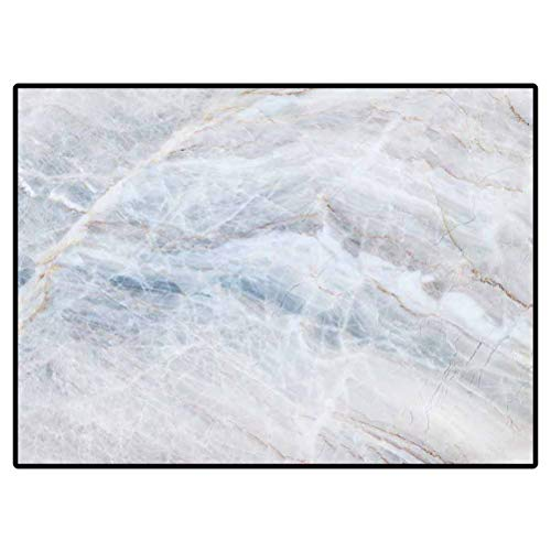 Outdoor Rugs for patios Kitchen Rugs and mats White Marble Texture Abstract Background Pattern with high Resolution 318725645 for Kids Teens Room Comfy Cute Floor Carpets 6 x 7 Ft