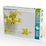 CALVENDO Puzzle Hypericum perforatum; Johanniskraut 1000 Teile Lege-Größe 64 x 48 cm Foto-Puzzle Bild von Tanja Riedel