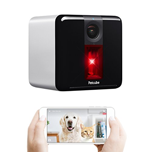 10 best petcube video for 2020