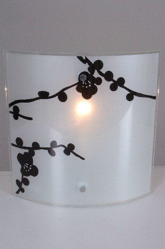 Naeve Leuchten Glaswandleuchte/h: 30.5 cm, b: 28.5 cm, a: 9 cm/Metall, glas/weiß 136101