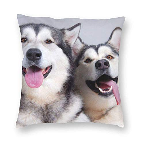 Square Throw Pillow Covers Brown White Husky Protectors Room Christmas Decorative Cushion Covers