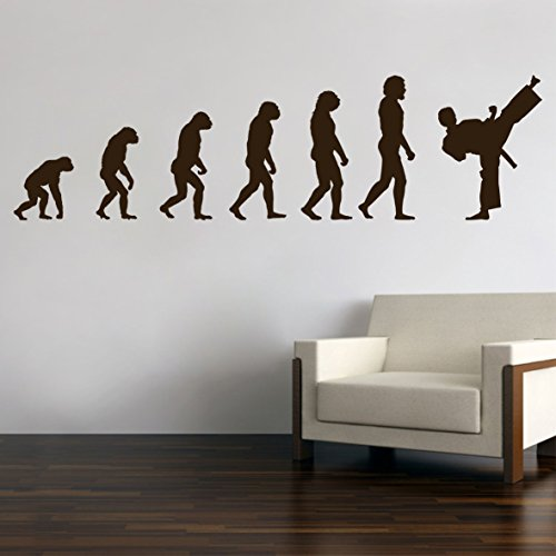 Karate Judo Kungfu Evolution Wandtattoo Wandaufkleber Wandsticker Wohnzimmer Kinderzimmer Aufkleber Sticker (60 x 17 cm, per Mail)