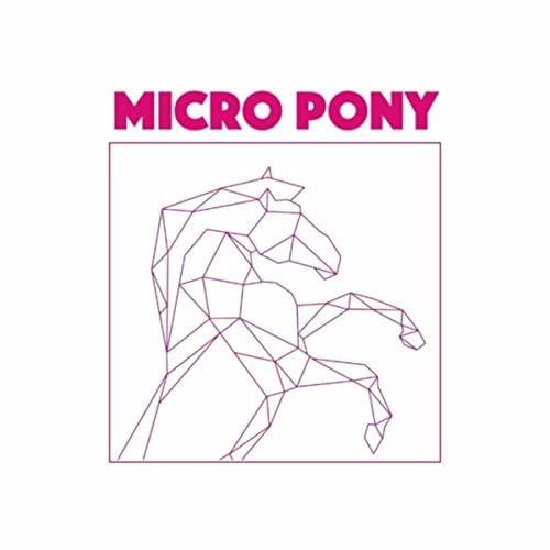 Micro Pony