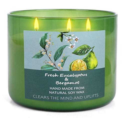 Natural Soy Candles for Home | Eucalyptus and Bergamot Essential Oils Stress Relief Candle for Women | 16 Oz Long Lasting Aromatherapy Candle 3 Wick Large Meditation Candles for Office