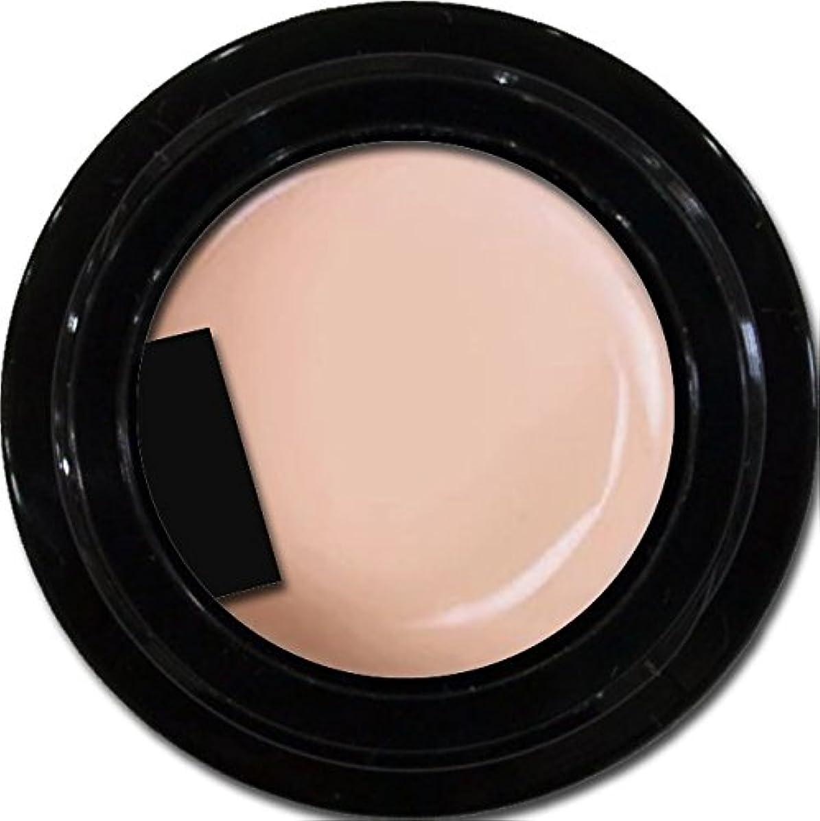 宴会不確実成長カラージェル enchant gel color gel S201 Peach Sheer 3g/ エンチャントジェル カラージェル S201ピーチシアー 3グラム