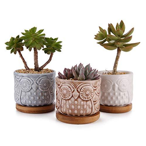 MuciHom Mini Keramische Succulente Cactus Planter Pot Set met Bamboe Tray, Home en Office Decoratie Desktop Vensterbank Bonsai Pots Gift voor Tuinman Bruiloft Verjaardag Kerstmis
